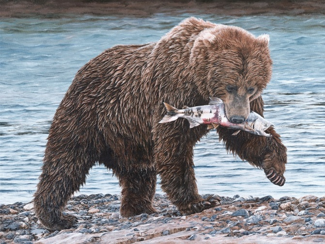 """Salmon for Lunch"" 30x40"" Limited Edition Giclee Prints available. Copyright Holly Kavonic"